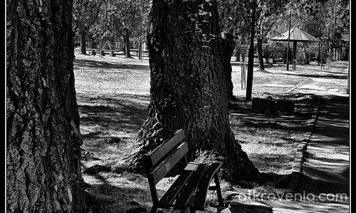 Самота...