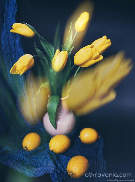 Пролетен eтюд