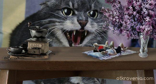 Скъпа, да си виждала котката?