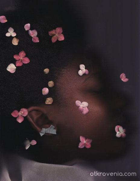 Sleeping Beauty project 10