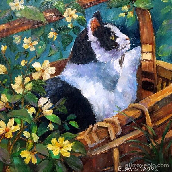 Коте в кошница