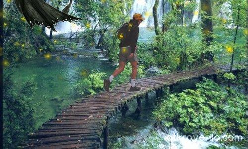 Разходка сред вълшебната гора
