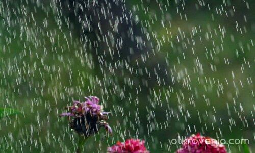 Сребърен дъжд