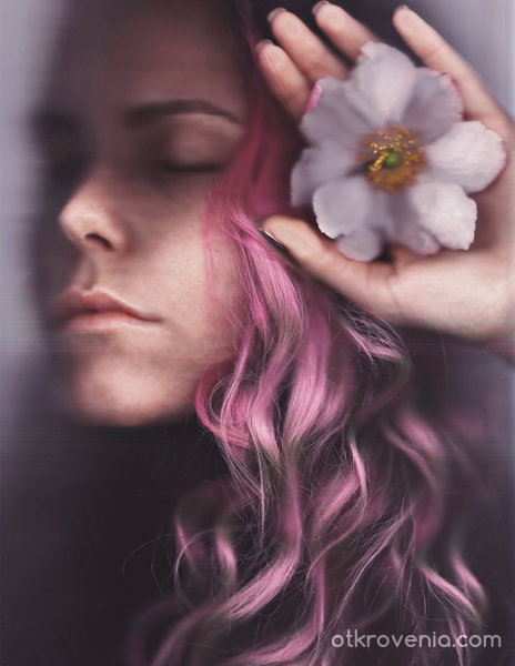 Sleeping Beauty project 8