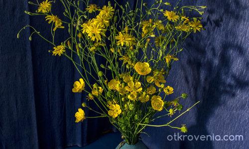 Етюд в синьо и жълто