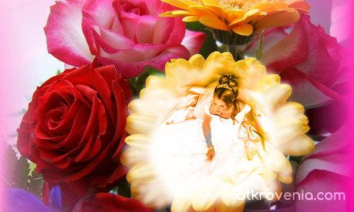 цветя и рози