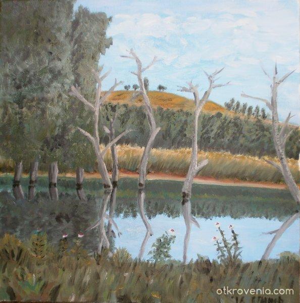 Удавени дървета
