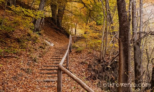 Нагоре по стълбите