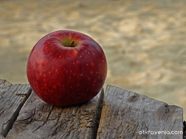 Ябълка-та