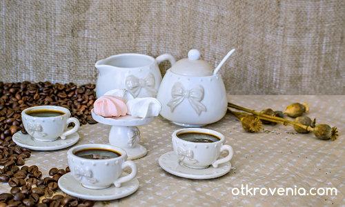 Кафепауза за елфи