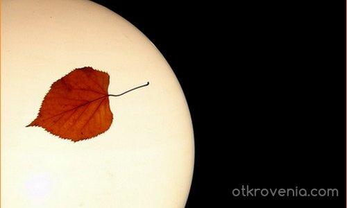 Есенна топлина