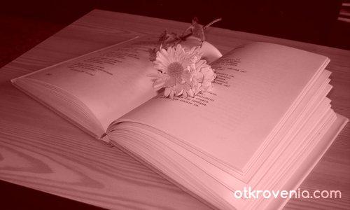 Красотата на знанието
