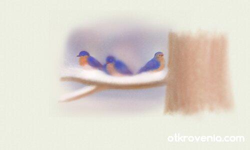 Птичета 2