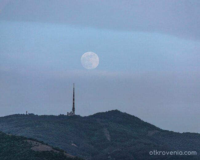 Бяла луна