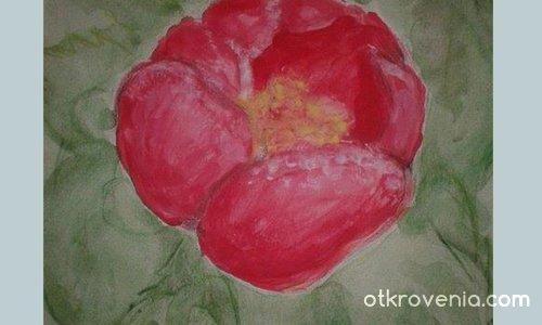 Срамежливото цвете- в цветовете му се крият нимфи