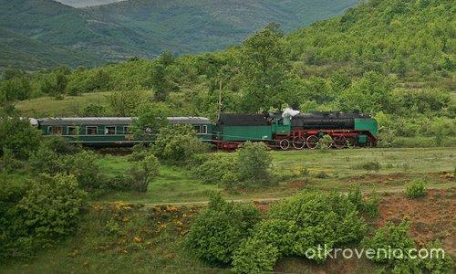 Зелено пътешествие