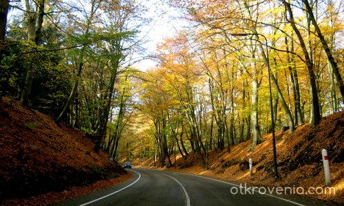 На път през есента