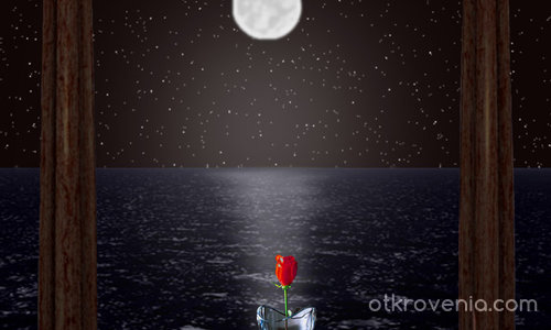 Лунна светлина