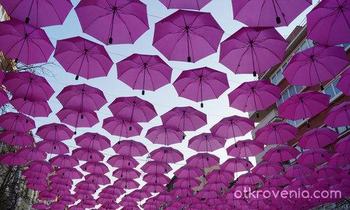 Чадърите