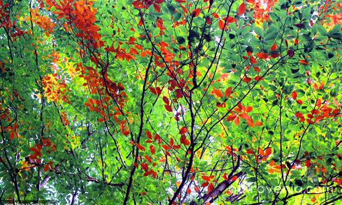Есента наближава