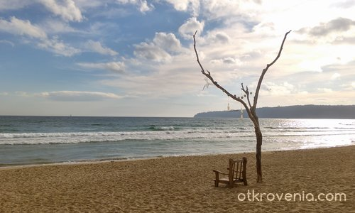 Безснежна Коледа на брега на морето - II