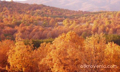 Ноемврийска  есен